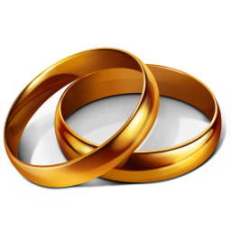 Výsledek obrázku pro svatba png
